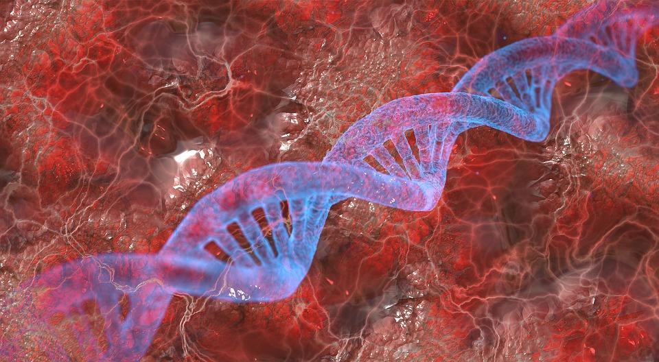 Обнаружен главный ген-регулятор шизофрении