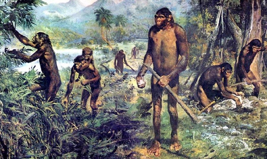 картинки питекантропы людей