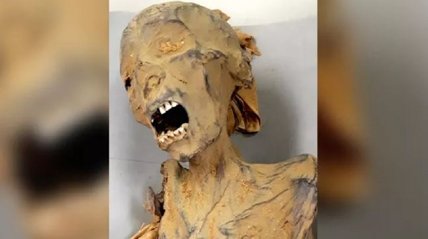 Меритамун была одной из двух мумий, найденных в Дейр-эль-Бахари, с застывшим криком
