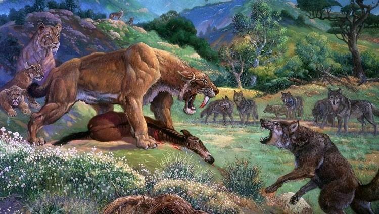 древний волк