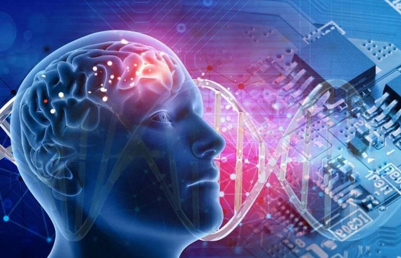 мозг машина