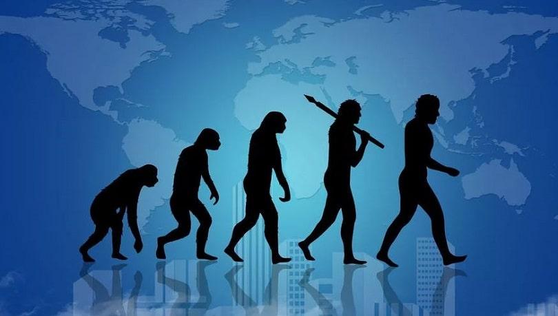 развитие человека