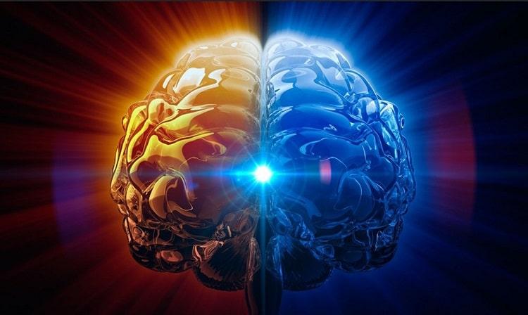мозг сознание
