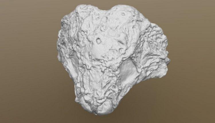 3D-модели черепа скутозавра, иностранцевии, двинозавра