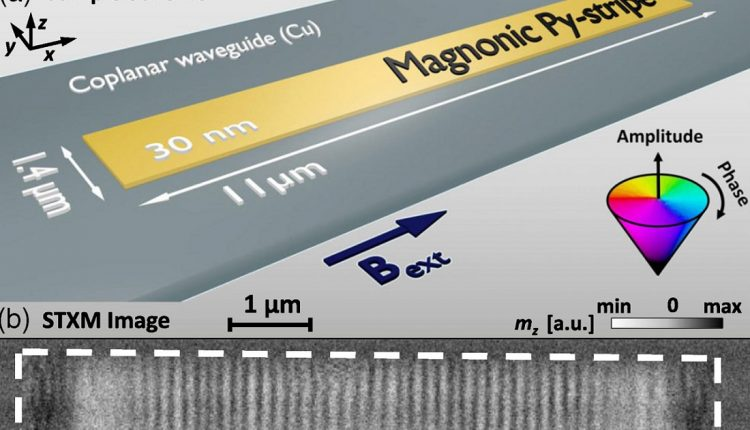 Пространственно-временные кристаллы - это временные периодические самоорганизующиеся структуры