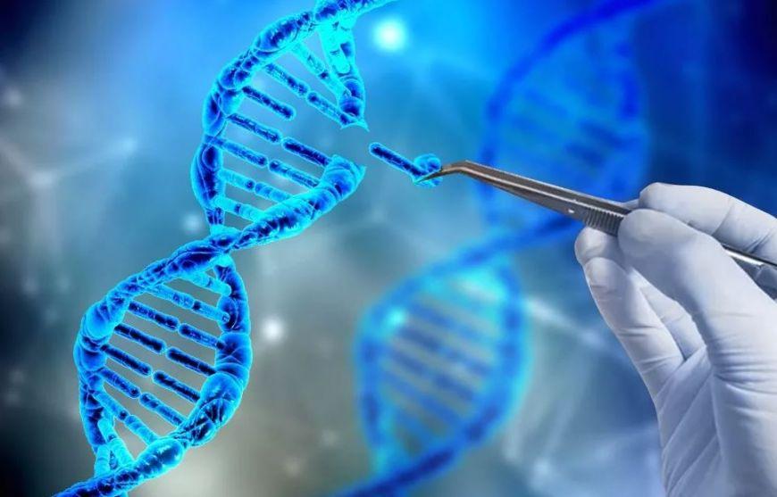 Тяжелый комбинированный иммунодефицит лечится генной терапией