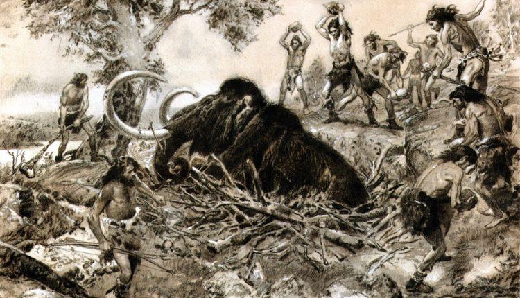 10 животных которые вымерли по вине человека