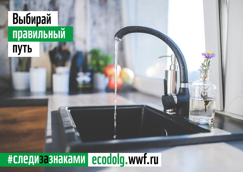 Бренды компании P&G поддержали акцию WWF России «День экодолга 2021»