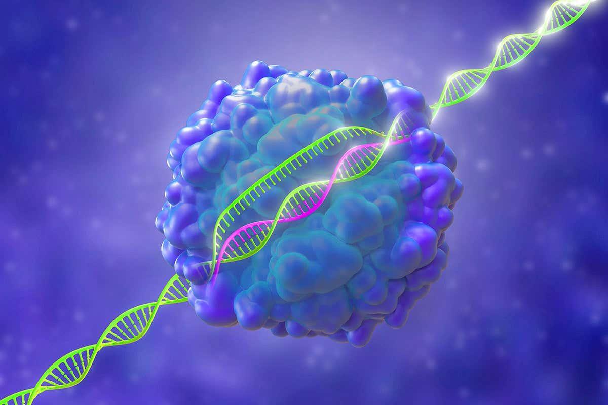 CRISPR и коронавирус
