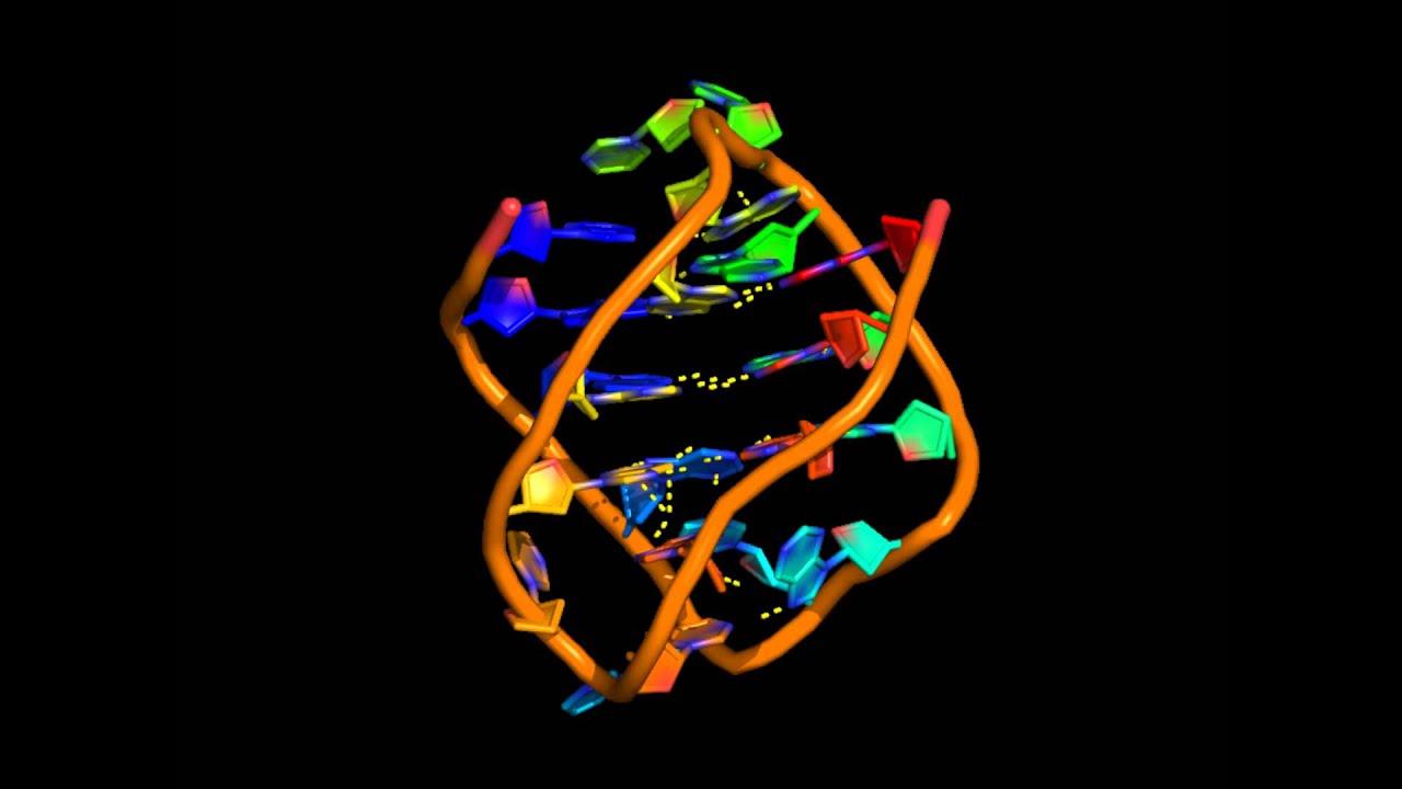 G-квадруплексы