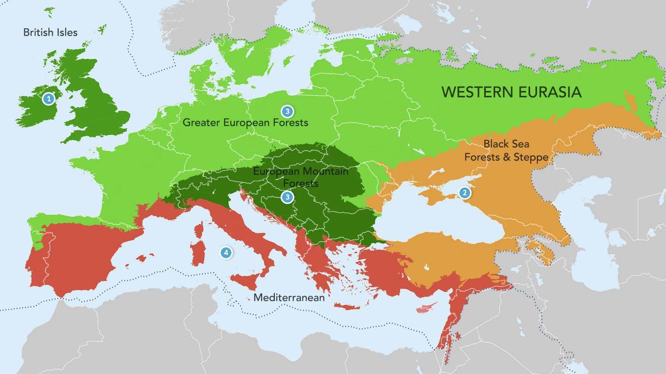 Западная Евразия