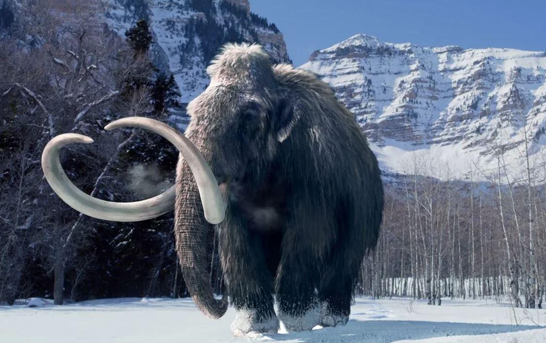Ученым удалось отследить передвижения отдельного мамонта на протяжении всей его жизни