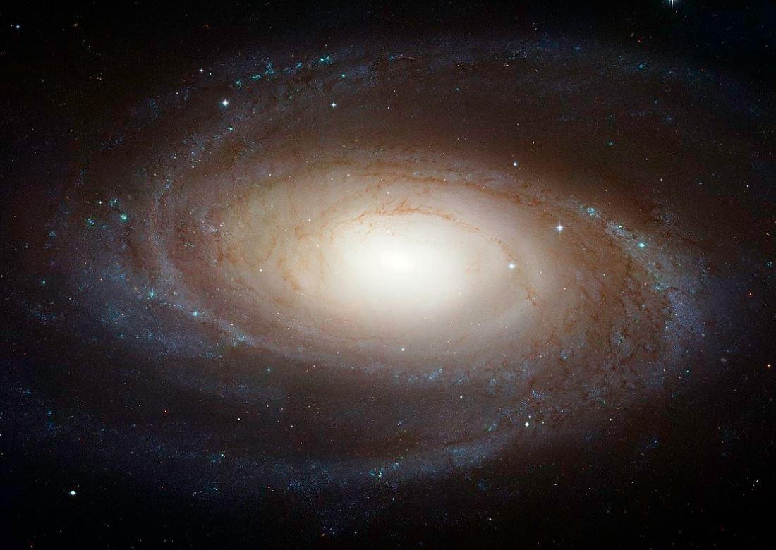 Изображение Мессье 81