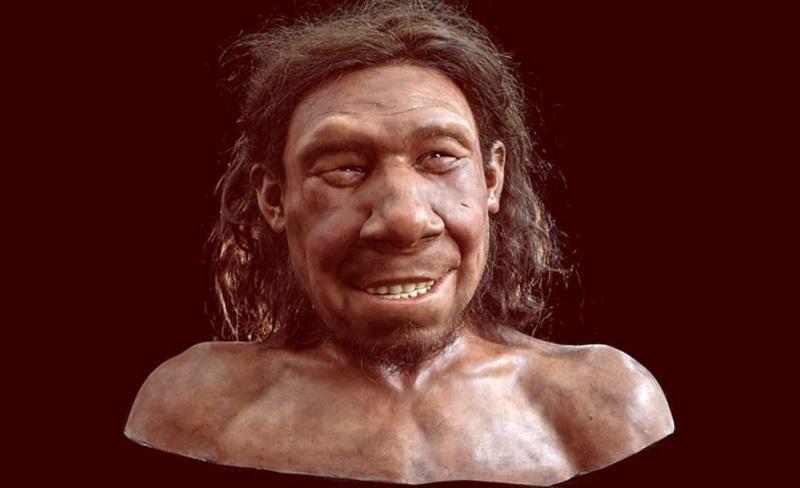 Раскрыто лицо голландского неандертальца