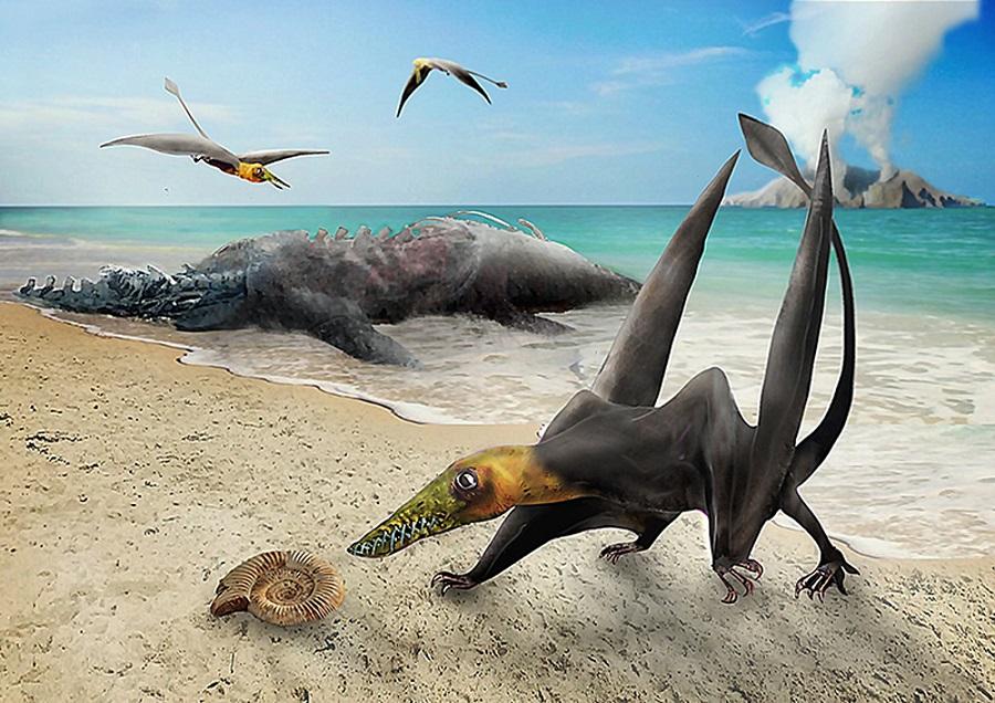 Реконструкция жизни птерозавра из формации Серро Кампаменто