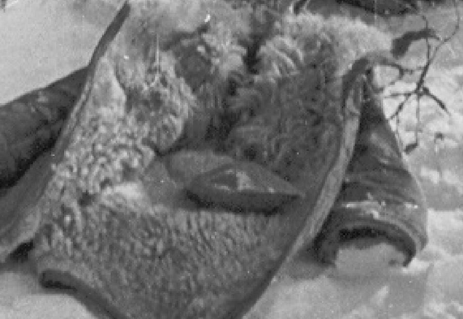 Рисунок 2 Крупный план граненой тарелки