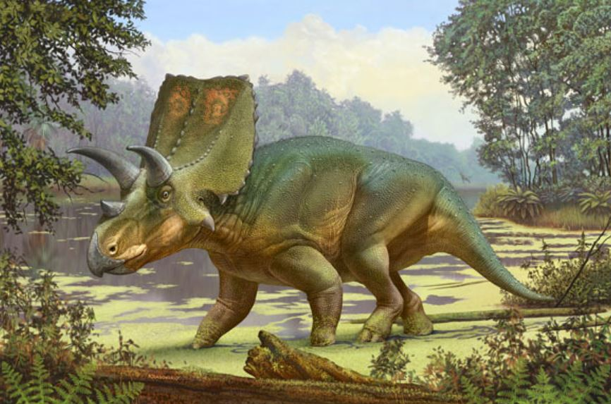 Реконструкция жизни Sierraceratops turneri