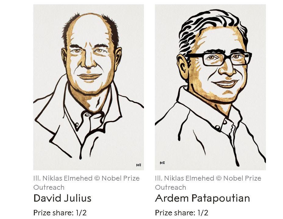 Нобелевская премия по физиологии и медицине 2021 года