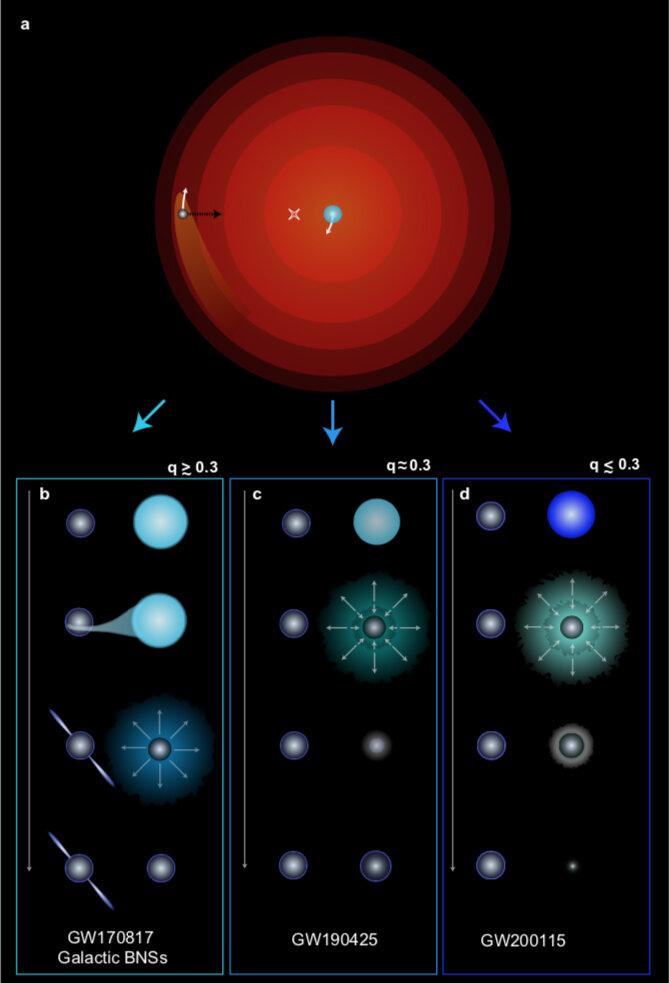 стадии образования двойной нейтронной звезды