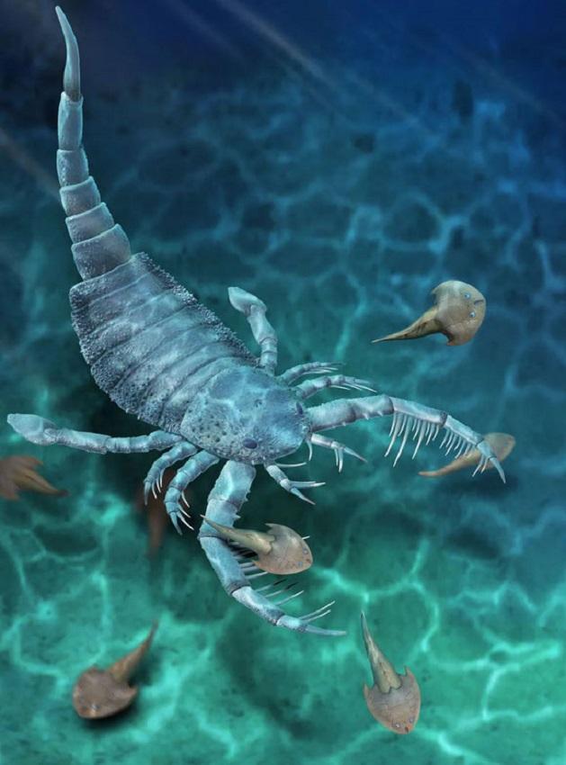 Terropterus xiushanensis - гигантский морской скорпион
